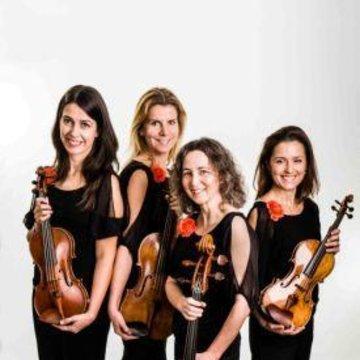 Saffron Strings's profile picture