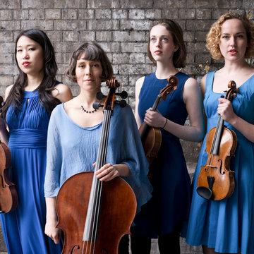 Bloomsbury Quartet's profile picture