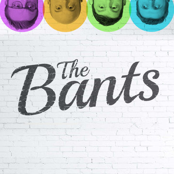The Bants's profile picture