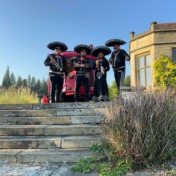 Mariachi Jalisco's profile picture
