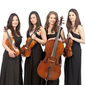 Palatine String Quartet, Trio & Duo's profile picture