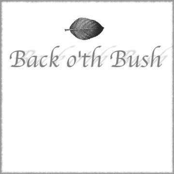 Back of the Bush's profile picture