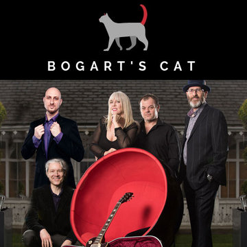 Bogart's Cat's profile picture