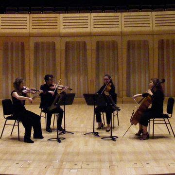 Adastri String Quartet's profile picture