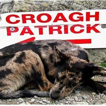 Croagh Patrick's profile picture
