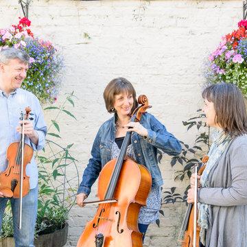 Thackeray String Quartet/Trio's profile picture