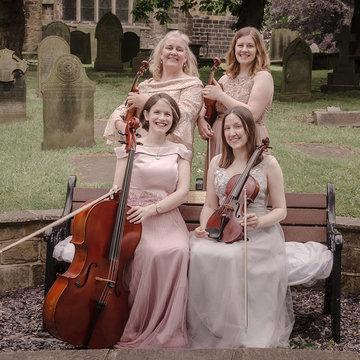 The Fern Quartet's profile picture
