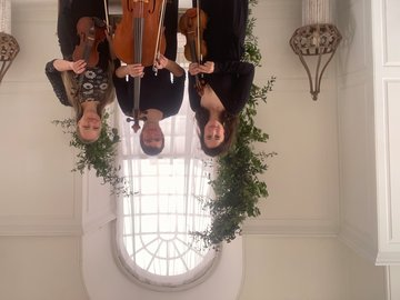 Love Strings's profile picture
