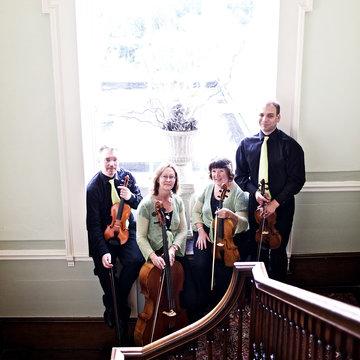 The String Quartet Company's profile picture