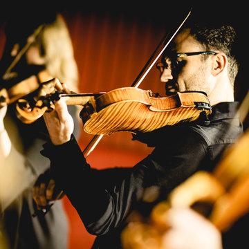 Capella String Quartet's profile picture