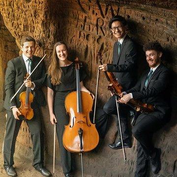 Lumos String Quartet's profile picture