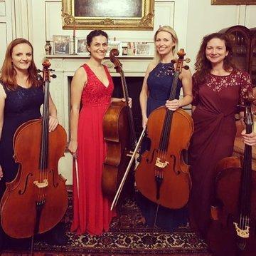 Brighton Cello Quartet's profile picture