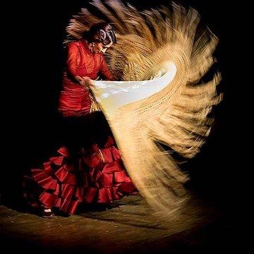 Lourdes Fernandez Flamenco Company's profile picture