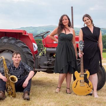 The Dail Trio's profile picture