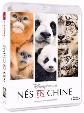 knd8agdwj7-dvd-ns-en-chine.jpg