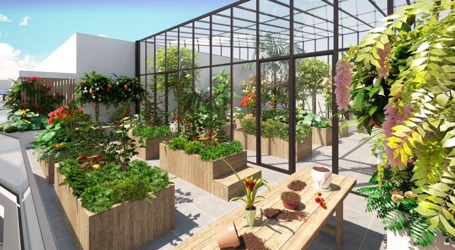 développement durable, biodiversité, jardins d'hiver, jardins partagés