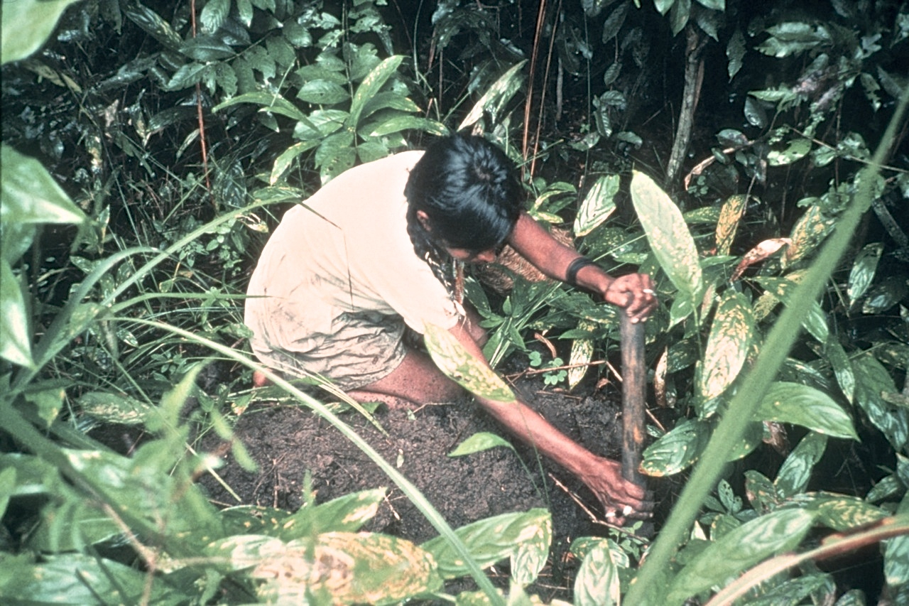 Traditional Agricultural Knowledge of Taiwan Indigenous People