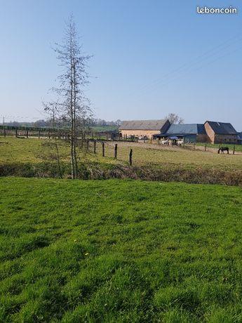 Ensemble 2 maisons avec 1 hectare