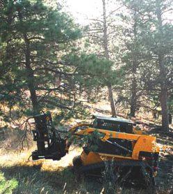 Timberwolf 14 in Tree Shear w Accumulator High Flow DYMX 3510D3