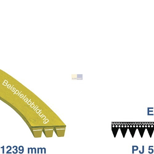 Riemen 1239 PJ 5 E 481235818215 Bauknecht, Whirlpool, Ikea