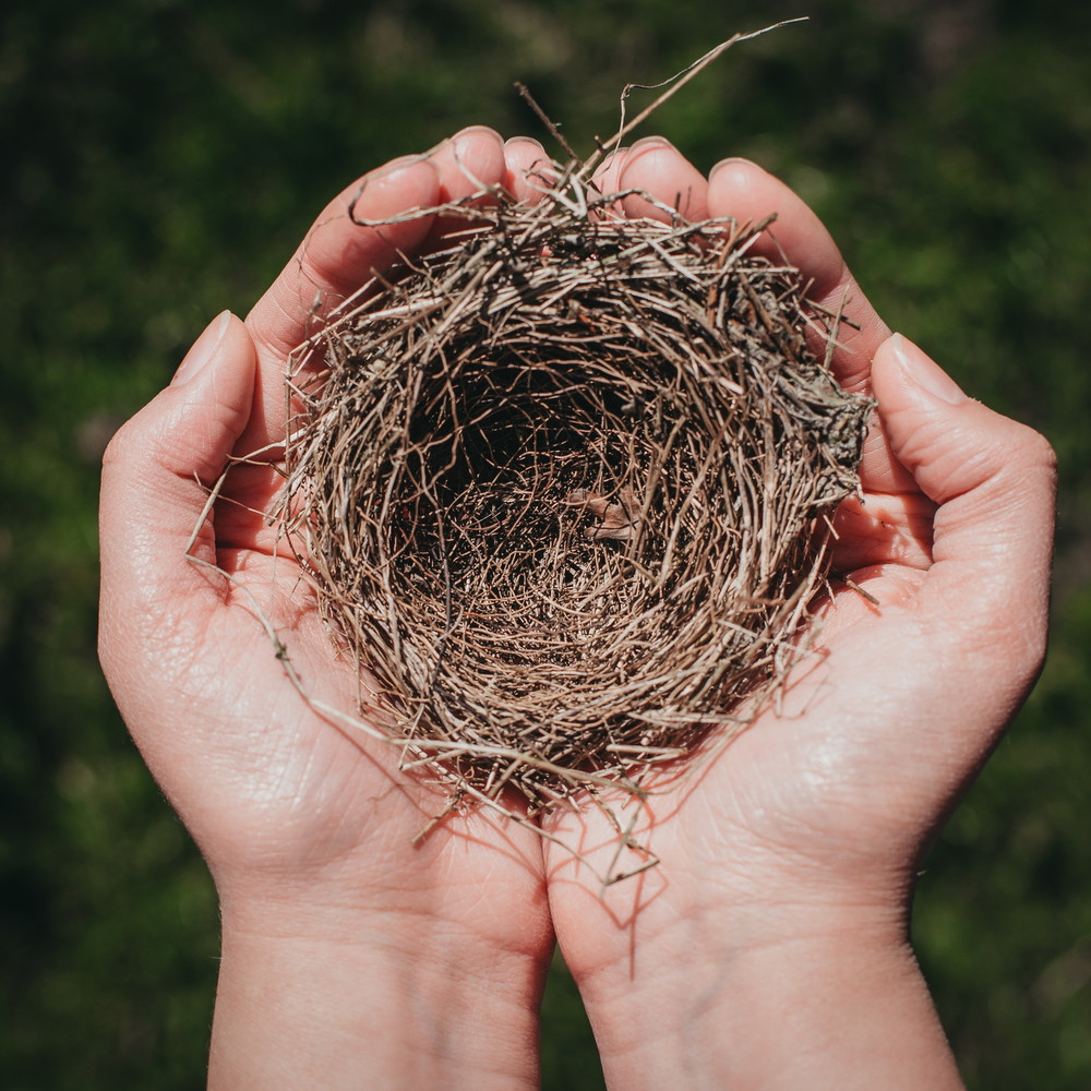 Navigating the Empty Nest as a Solo Mom