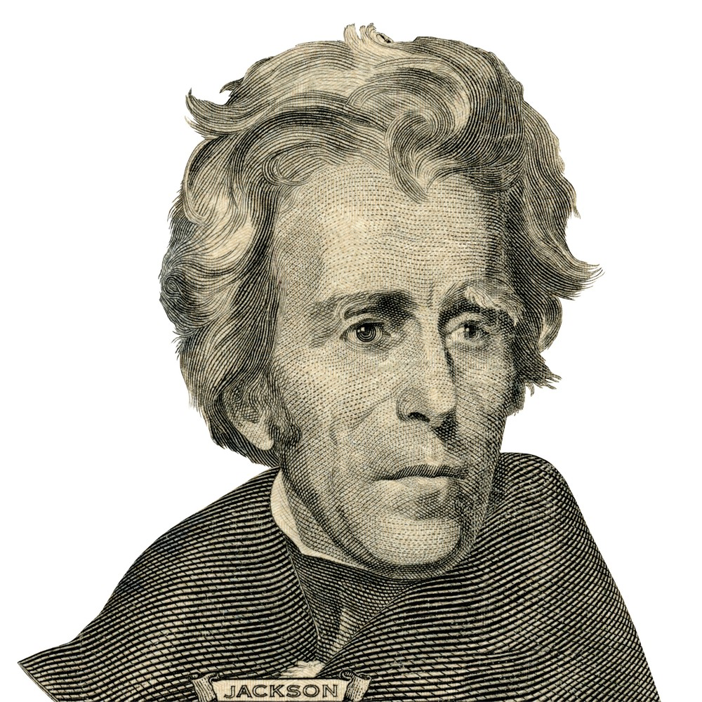 Andrew Jackson: His Solo Mom,Brave as a Lioness