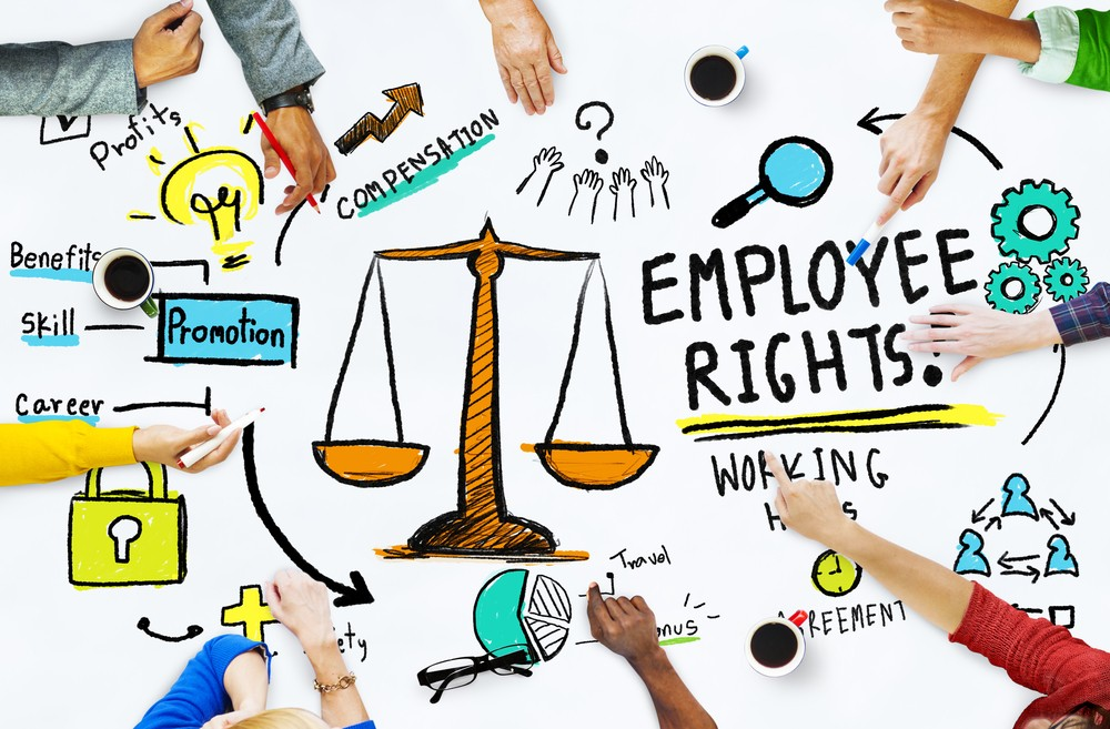 Top 5 Employment Laws You Should Know