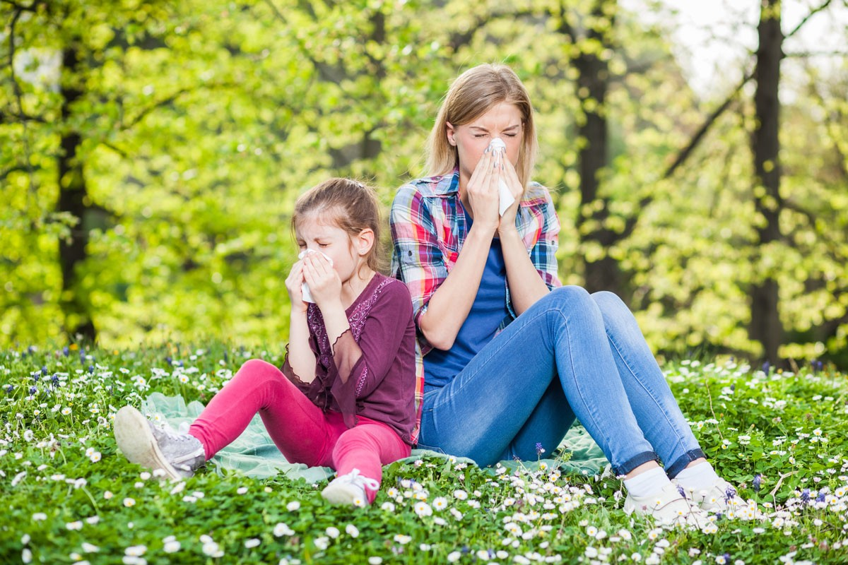 Allergies: They're Not Just Seasonal