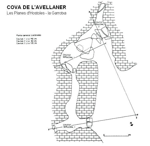topo Cova de l'Avellaner
