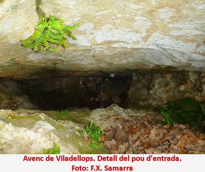 foto Avenc de Viladellops