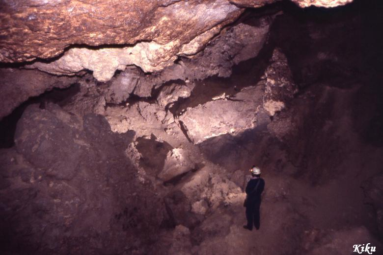 foto Cova de l'Escaleta