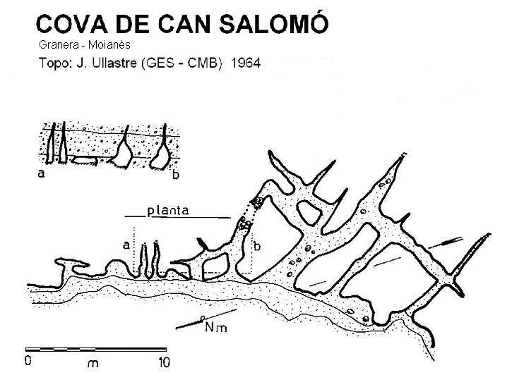 topo Cova de Can Salomó