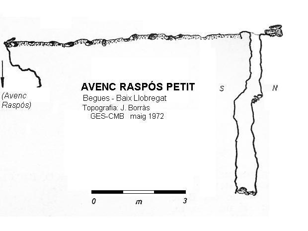 topo Avenc Raspós Petit