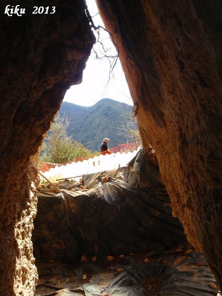 foto Cova del Parco
