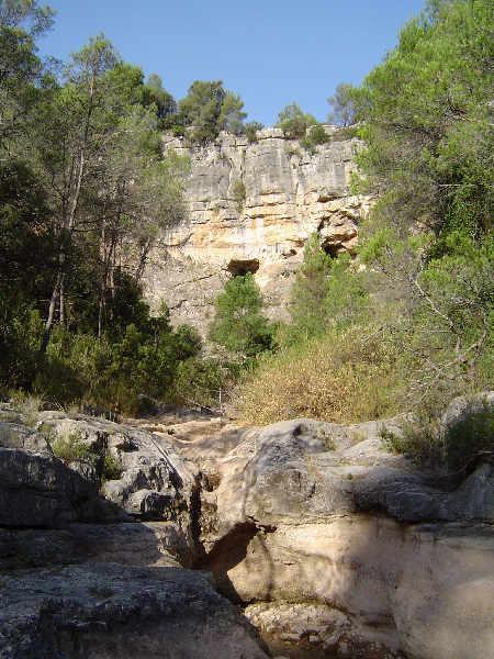 foto Cova del Bassot