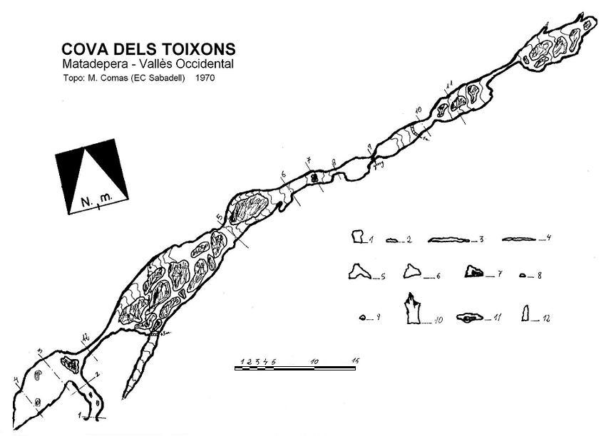 topo Cova dels Toixons