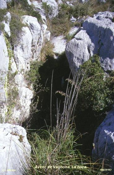 foto Avenc de Vallbona