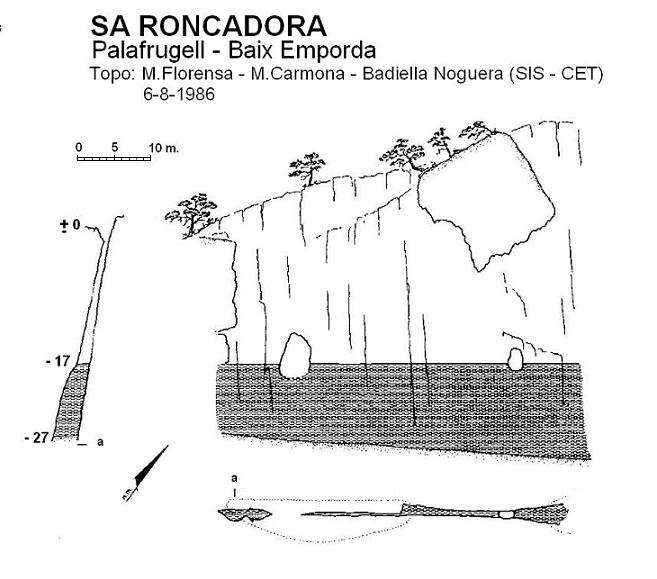 topo Sa Roncadora