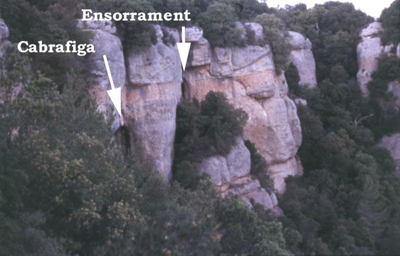 foto Cova de la Cabrafiga