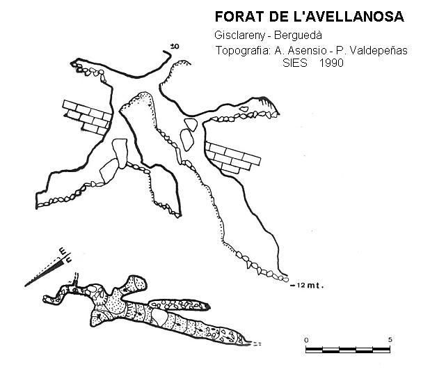 topo Forat de l'Avellanosa