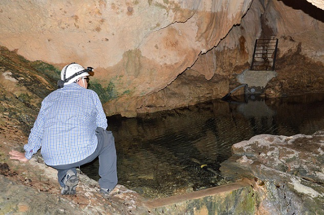 foto Cova d'en Ximet
