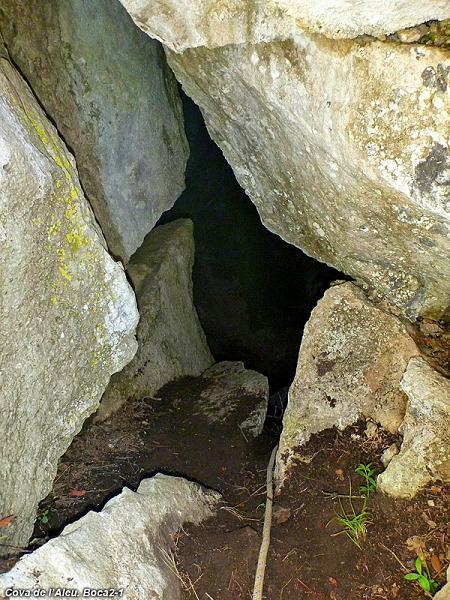 foto Cova de l'Aleu