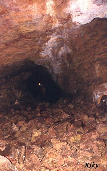 foto Graller de la Pleta de l'ós
