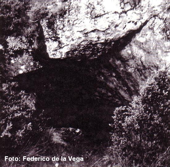 foto Lo Foric