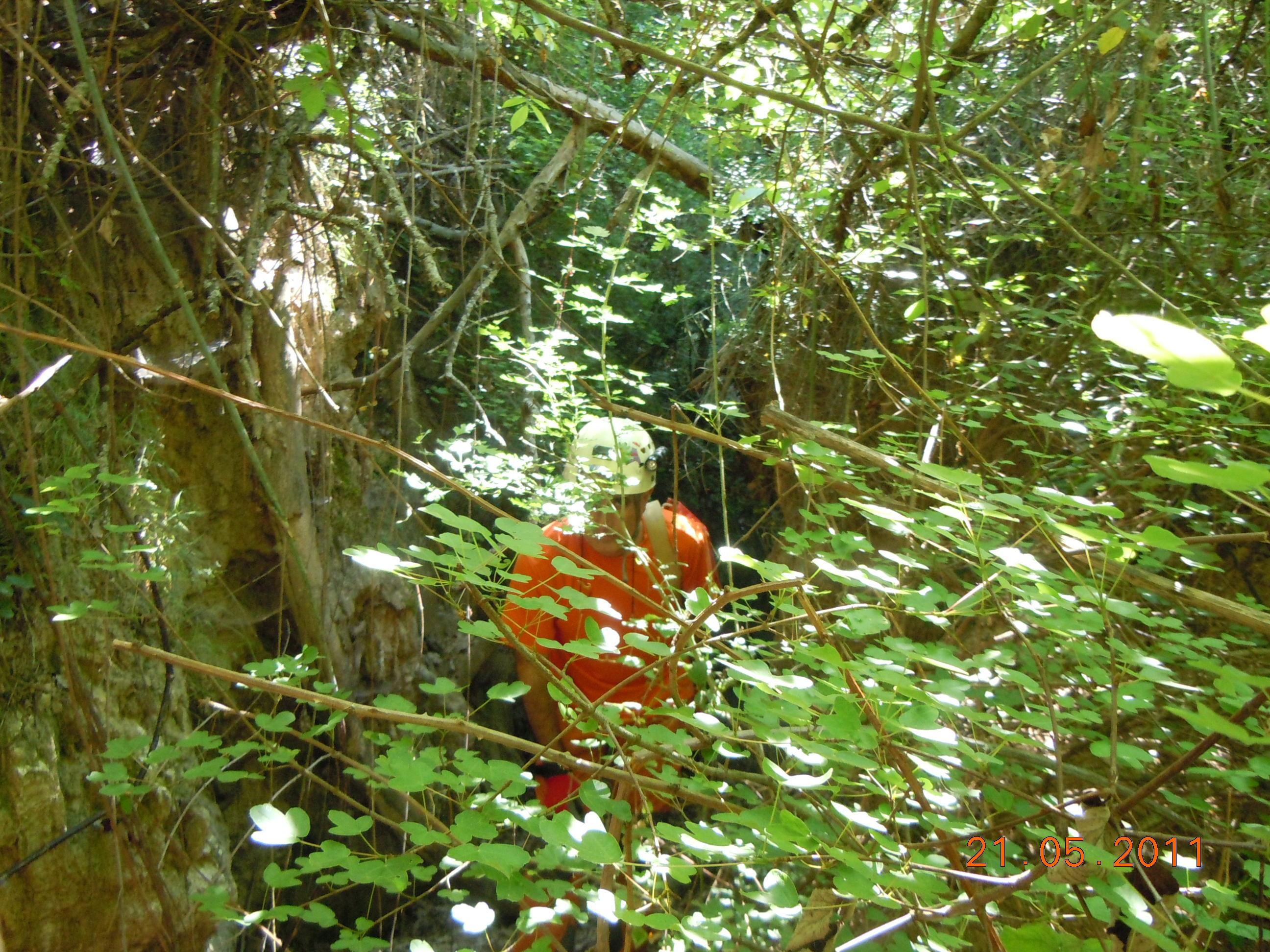 foto Cova del Barranc de Famides