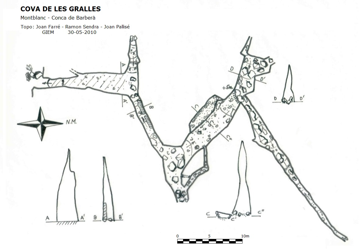topo Cova de les Gralles