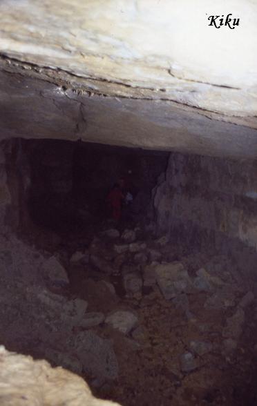 foto Cova de la Carrera