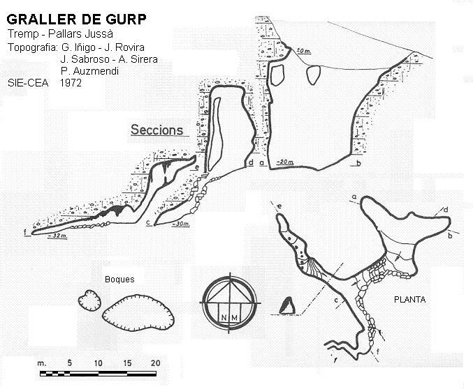 topo Graller de Gurp