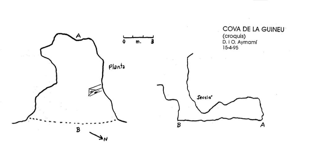 topo Cova de la Guineu