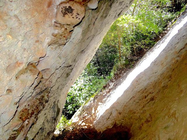 foto Cova Gran de la Font Freda